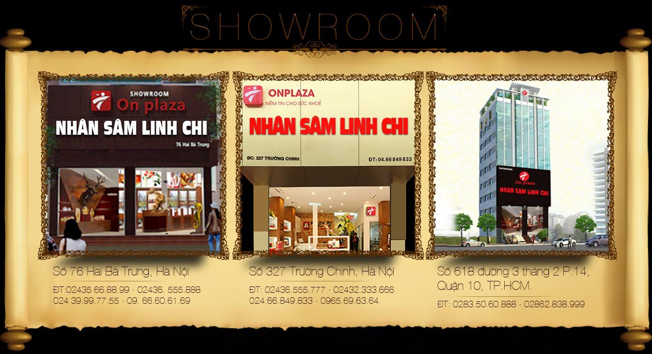 showroom-cong-ty